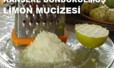 Dondurulmuş Limon Mucizesi