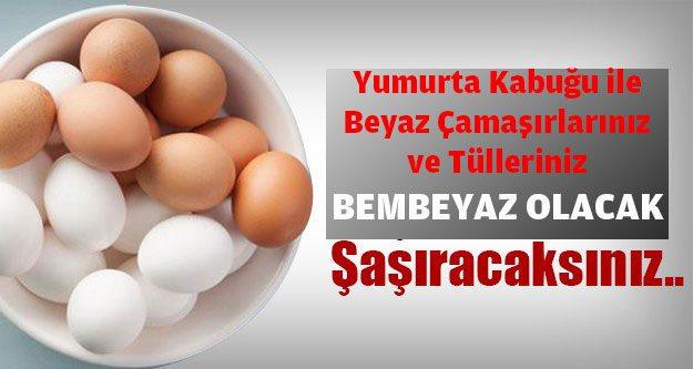 yumurta-kabugu