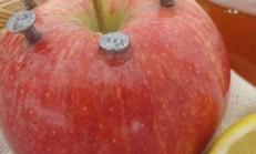 Elmaya Çivileri Batırarak Tüketirseniz