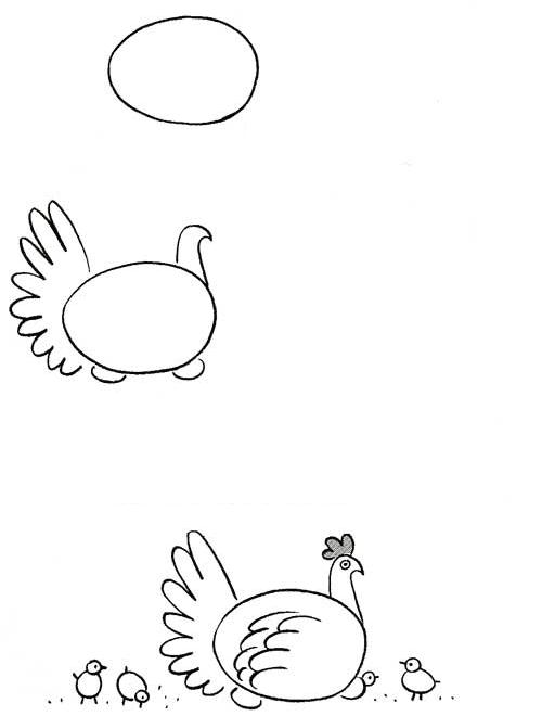 tavuk-cizimi