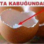 Yumurta Kabuğundaki Şifa