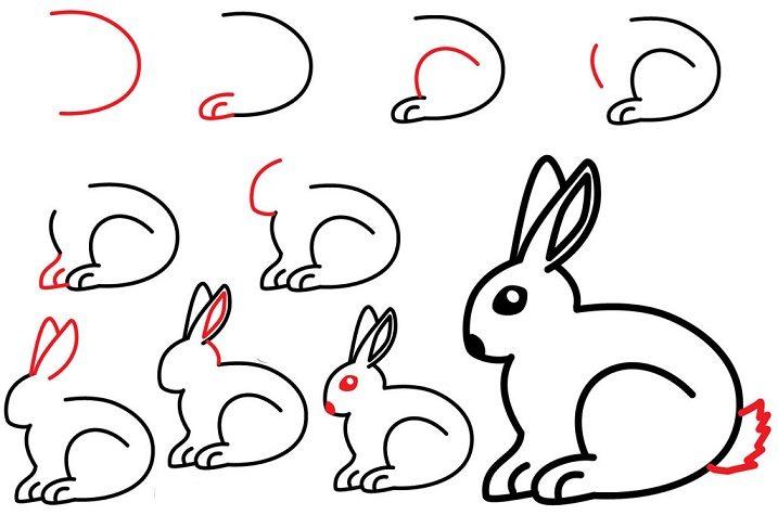 Kolay Tavşan Çizimi