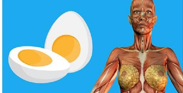 Günde 2 Yumurta Yedi ve Mucizeye Şahit Oldu...