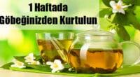 1 Haftada Karın Yağlarını Eriten Çay Tarifi