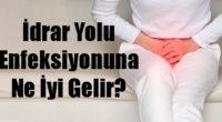 İdrar Yolu Enfeksiyonuna Ne İyi Gelir?